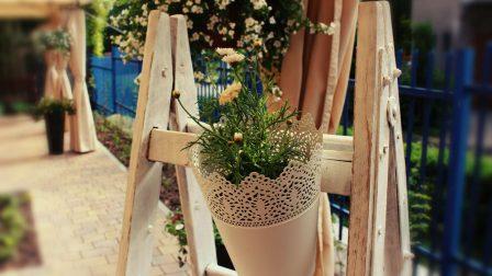 na zdjęciu dekoracja w ogrodzie biała doniczka ze stokrotkami zawieszona na białej drabinie